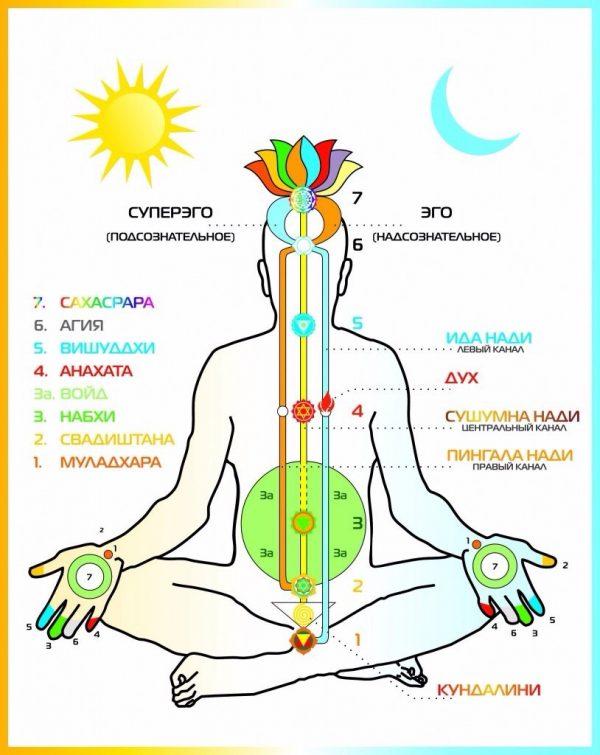 Плакат восточная медицина. Чакры человека (вариант 4)